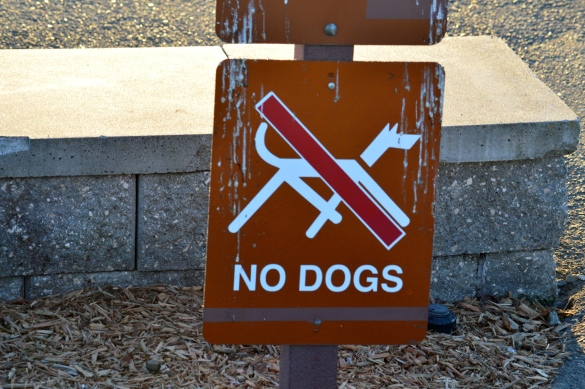 No Dogs Allowed posted at every entrance to the park.  Spent the entire time dodging petrified dog poop.